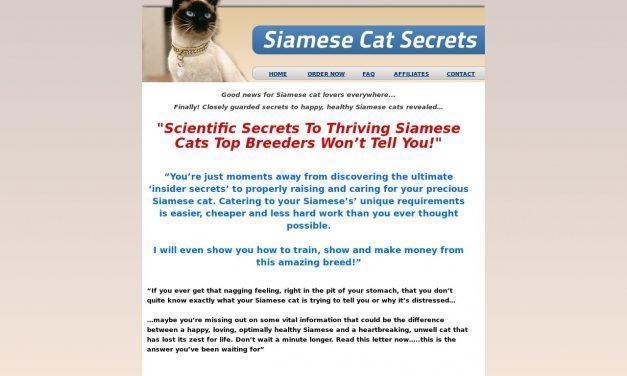 Siamese Cat Secrets
