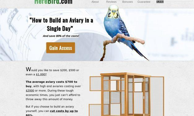 Aviary Building: Home Aviary Design and Construction Plans — HereBird.com – Bird Cage & Bird Aviary Advice, Reviews & How-To Guides