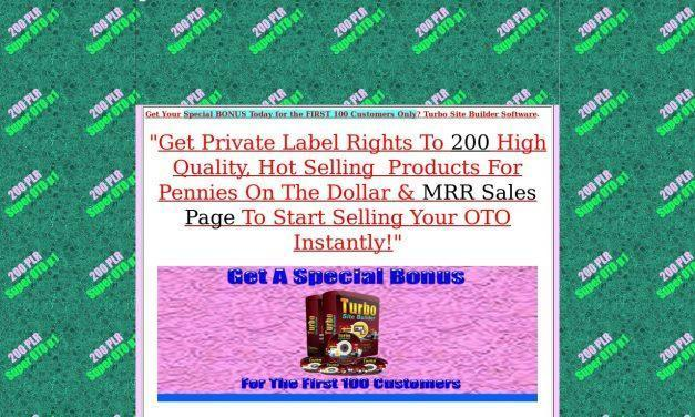 200 PLR Super OTO P1 | PLR Fire sale