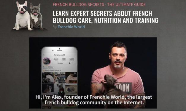 French Bulldog Secrets – The Ultimate Guide