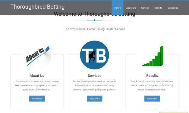 Thoroughbred Betting – Professional Horse Racing Tipsters
