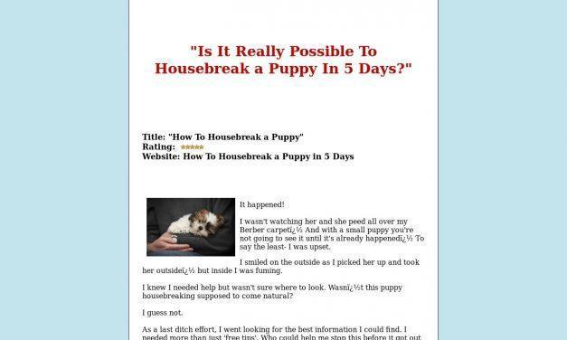 How To Train My Puppy Fast System